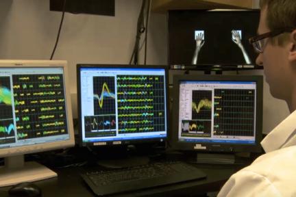 脑机接口让猕猴远程控制两个机械臂