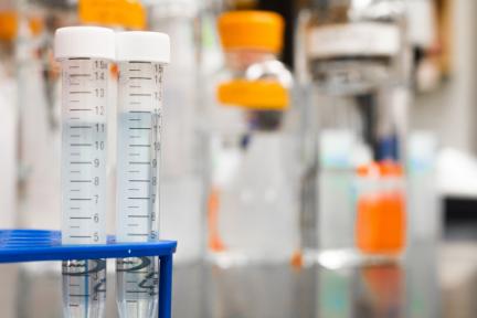 科技神回复丨超长寿者血液携带特殊T细胞,原来《生化危机》真的有事实依据