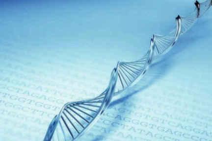 主打覆盖30亿碱基的全基因组检测,奕真生物想让4000多种遗传病得到及时干预