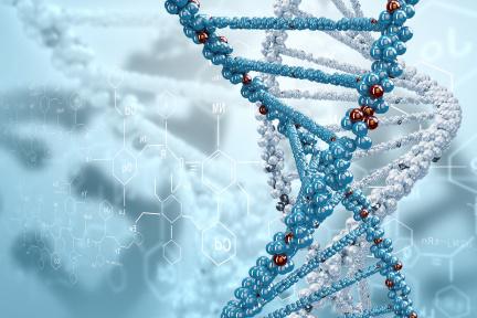布局精准医疗,人和未来从用户定位和BT(生物技术)+IT技术优势切入