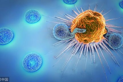 全球抗肿瘤抗体药物发展现状及趋势