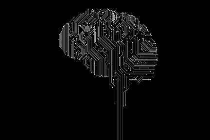 为什么说大脑不是电脑?(上)