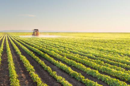 36氪首发  「农商通」获得4000万元A轮融资,农产品交易平台互联网化的路还有多远?
