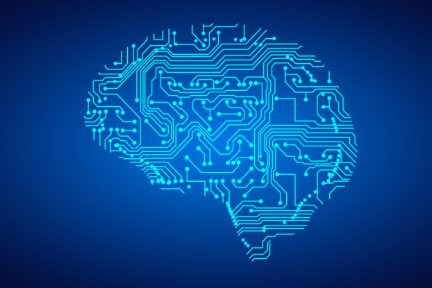 为什么说大脑不是电脑?(下)