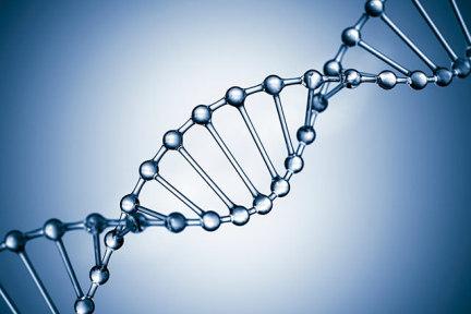 DNA 应用商店,可以在线获取基因信息   2016 年十大突破技术