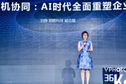 明略科技副总裁刘静:做全球企业级人工智能领跑者,打造产业AI落地的新路径 | 2019 WISE 超级进化者大会