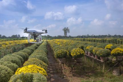 """机器人""""入侵""""农业:23家企业吸金超2亿美元,除草、喷药、采摘无所不能"""