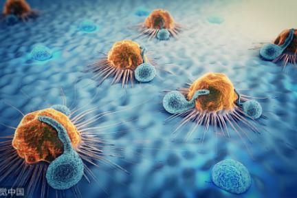 36氪首发 | 用基因检测寻找肿瘤免疫潜在获益患者,「裕策生物」获数亿元B轮融资