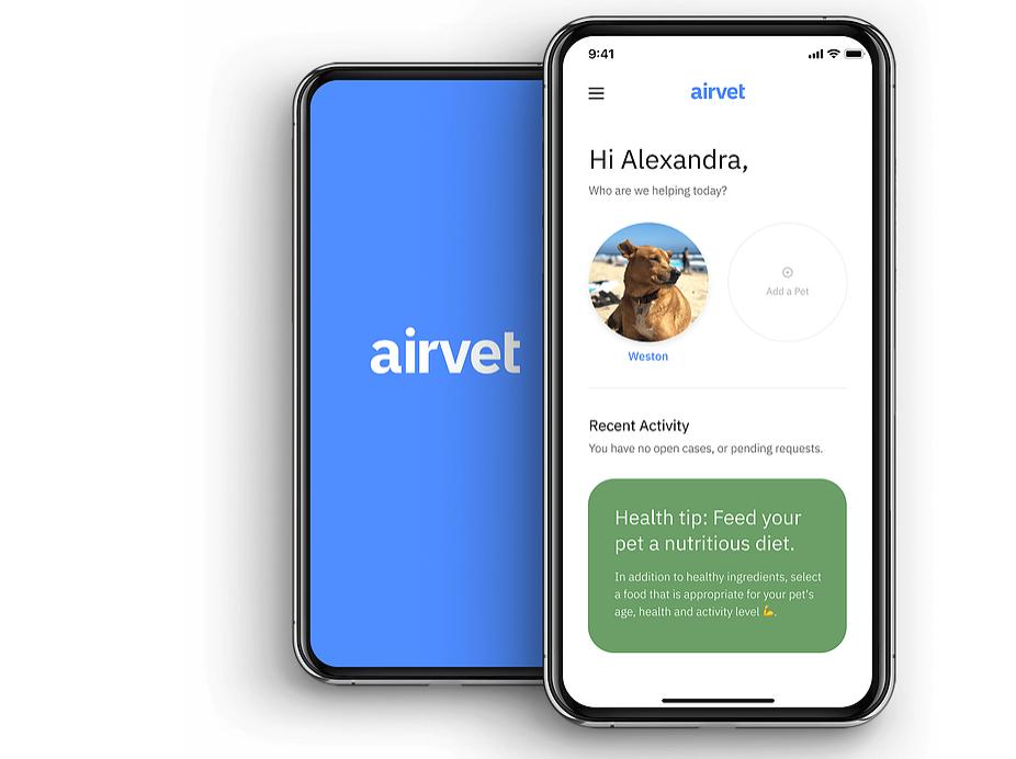 宠物也需要远程医疗,「Airvet」获1400万美元A轮融资