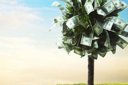 3个月为开源项目融资300万美元,他们是怎么做到的?(上)