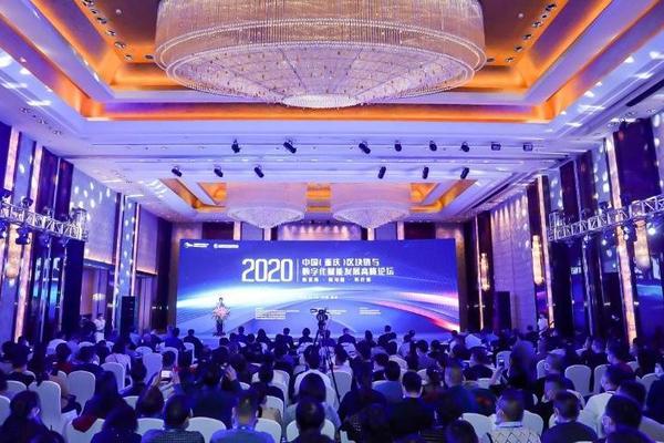 大咖齐聚,中国(重庆)区块链与数字化赋能发展高峰论坛在渝举行