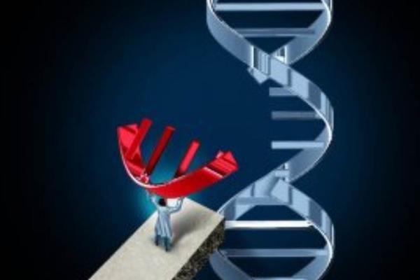 攻克「碱基基因编辑」核心技术,「正序生物」要为遗传病患者提供突破性疗法