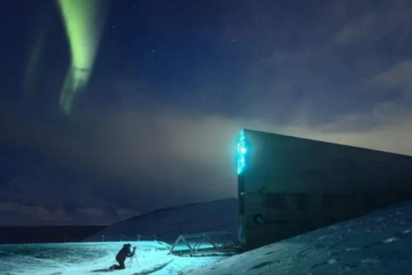 北极科考:我们为什么要在北极呆上一年?