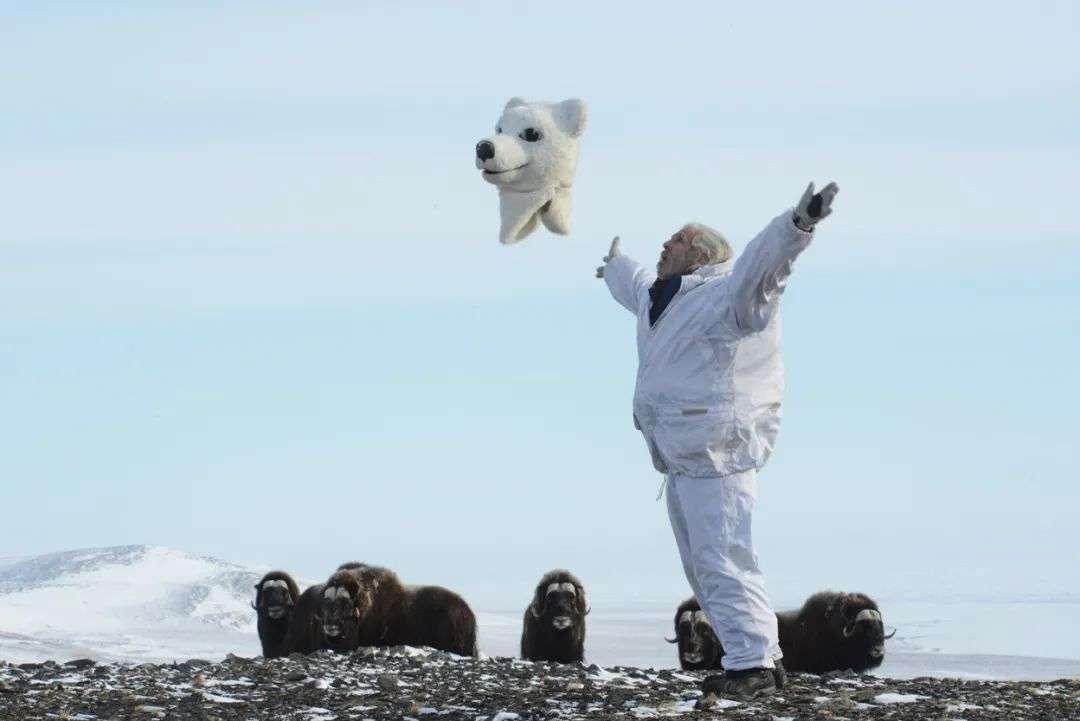 """""""妈呀,那只北极熊把自己的头揪掉了!"""""""